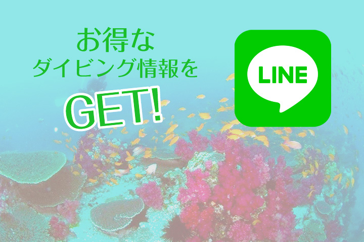 公式LINE