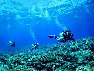 憧れの美しい海で潜れるようにスキルアップしよう!!